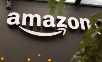 收入减速成问题 亚马逊能否继续笑看春风?